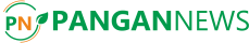PanganNews Logo